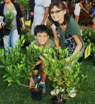 Trre-planting.ArborDay-in-Hawaii