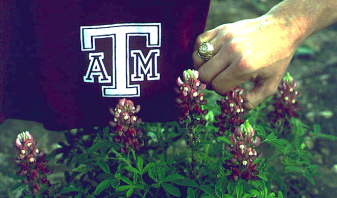 tx-bluebonnets-aggie-variety-and-logo