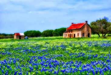 tx-bluebonnets-field-house