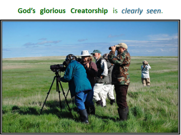 ppt-creatorship-is-clearly-seen-grassland