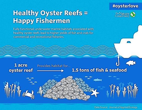 Happy-Oyster-Reefs-chart.NatureConservancy